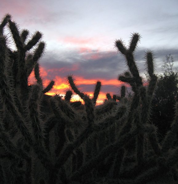 I can see why they named their mining town Sunset. <br> <br> It was one of the most beautiful sunsets I have ever seen.<br> <br> (11/4/09; exploratory desert excursion)