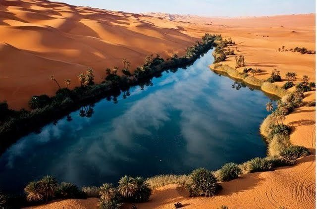 Sahara Desert 5