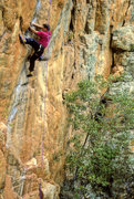Rock Climbing Photo: Dave Bingham  Araps