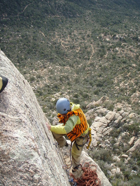 Rock Climbing Photo: A rare desert snow leopard, Granite Mountain