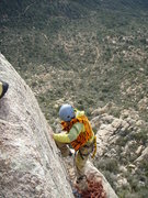Rock Climbing Photo: A rare desert snow leopard, Granite Mountain