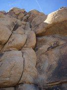 Rock Climbing Photo: Jtree new year's 2009