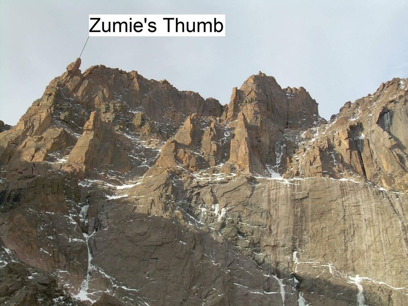 Zumie's Thumb.  Photo by Leo Paik.  (I just added the label)