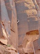 Rock Climbing Photo: Tara cruising up Bioturbation