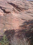 Rock Climbing Photo: Baja Ha Ha from across the path.