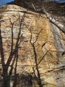 Rock Climbing Photo: Appalachian Spring climbs the left line of bolts.