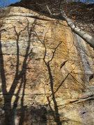 Rock Climbing Photo: Appalachian Spring climbs the left line of bolts.
