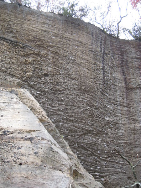 Rock Climbing Photo: Mama Benson climbs the left-most line of bolts, be...