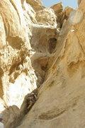 Rock Climbing Photo: Going up Cyclops in J-Tree.