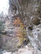 Rock Climbing Photo: Enjoying The Sauce at The Motherlode.