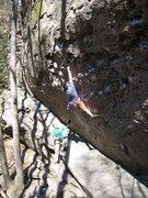 Rock Climbing Photo: Legendary & prolific hard man Steve Bechtel knows ...