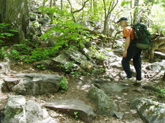 Rock Climbing Photo: Jeff Vogtschaller cruises the CCC trail to the Eas...