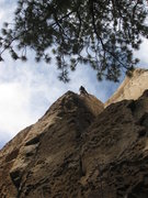 Rock Climbing Photo: Climbing the arete