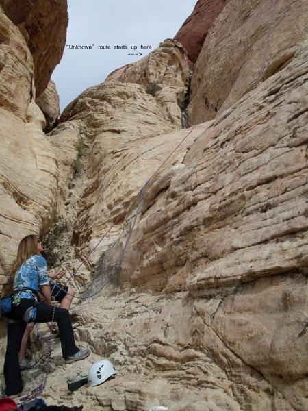 "Rock Climbing Photo: Sue belaying at ""Man's Best Friend"" abou..."