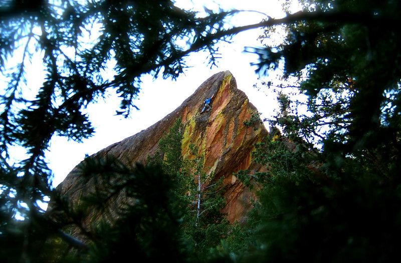 Rock Climbing Photo: Ultrasaurus.