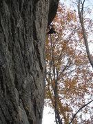 Rock Climbing Photo: Onsighting Prometheus Unbound.