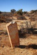 Rock Climbing Photo: Odd things in the desert...
