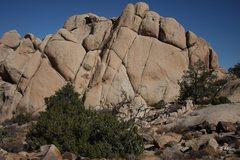 Rock Climbing Photo: Junk Clump from the Ryan Mtn Trail