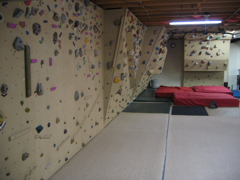 Basement bouldering wall.