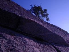 Rock Climbing Photo: Beginning of the Crack on Walter Funkite.  Anchors...