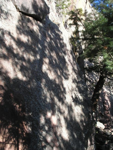 Climbs just right of the shadow of the tree.