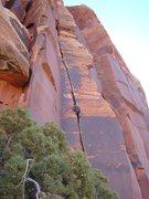 Rock Climbing Photo: Colt cruising Gorilla Crack.