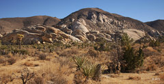 Rock Climbing Photo: Hall of Horrors Area and Saddle Rocks Area