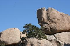 Rock Climbing Photo: Strange faces.