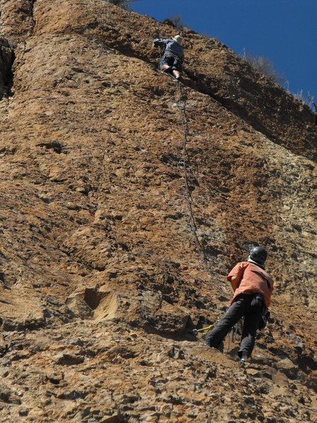 Rock Climbing Photo: Tony Bird on P2 of Harvey