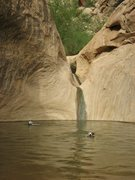 Rock Climbing Photo: Swell swimming pool