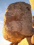 Rock Climbing Photo: last bolt on Cryptic