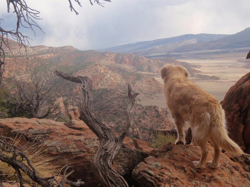 Rock Climbing Photo: Paradox Valley, Colorado