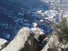 Rock Climbing Photo: A local resident