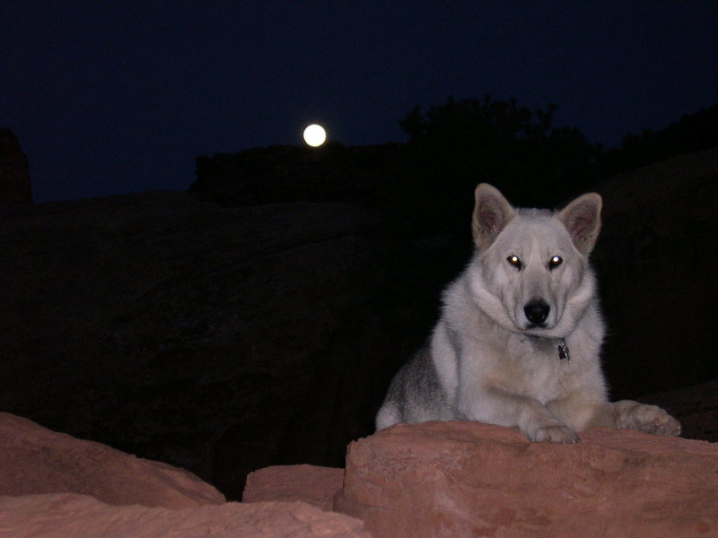 Nikita chilling after a long day of canyoneering in the swell.