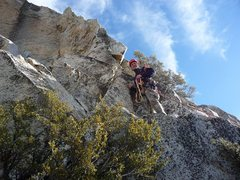 Rock Climbing Photo: fourth belay station is just right of this bush be...