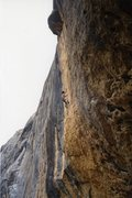 Rock Climbing Photo: Pulling down on the crux of Tenere.  Photo by Lind...