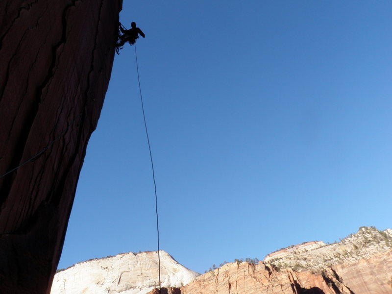 Rock Climbing Photo: Dave Hoven high on the bolt ladder, P6.