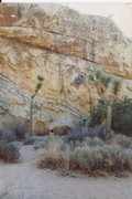 Rock Climbing Photo: Me on Big Moe