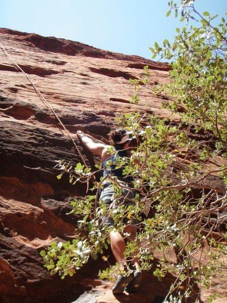 Rock Climbing Photo: Climbing at Redrocks Las Vegas