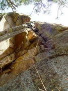 Rock Climbing Photo: The initial cracks of Lithophyte. These are harder...