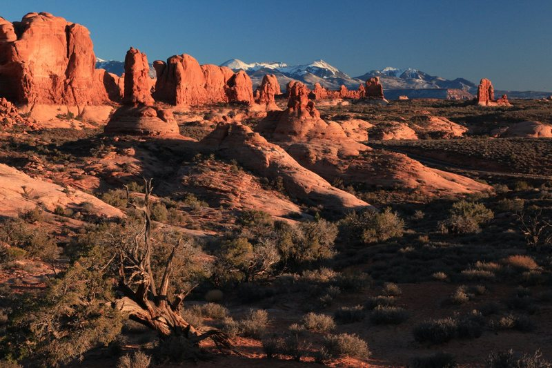Sunset in Arches NP...<br> <br> Photo Credit: Harlan Humphrey