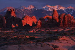Rock Climbing Photo: Utah's famed arches below the La Sal Mountains.