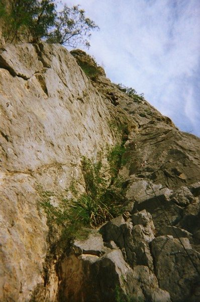 Rock Climbing Photo: Matt Leading Bad Monkey on Mini Super Wall