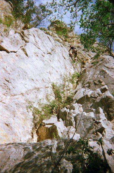 Matt leading Bad Monkey on Mini Super Wall