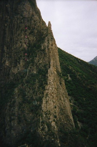 Rock Climbing Photo: A picture of Dope Ninja from the top of Black Cat ...