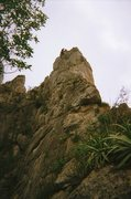 Rock Climbing Photo: Gary at the top of Dope Ninja