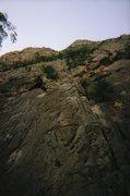 Rock Climbing Photo: Matt Leading on the Cat Wall