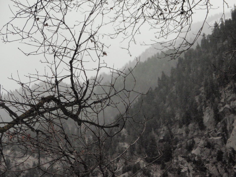 Rock Climbing Photo: Storm moving into Little Cottonwood Canyon.