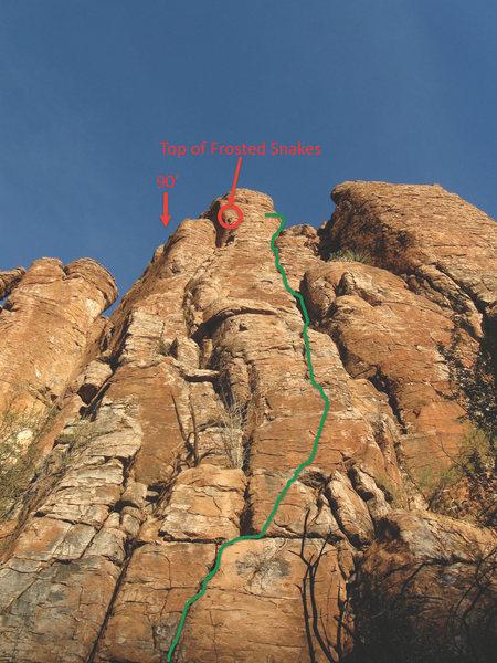 Rock Climbing Photo: Chocolate Covered Scorpion Crack