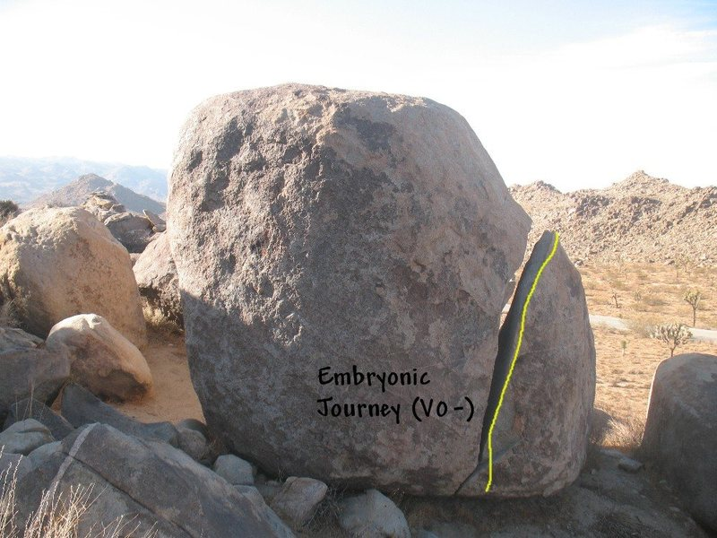 Embryonic Journey (V0-), Joshua Tree NP